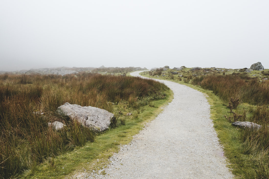 The way to Mahon Falls in County Waterford, Ireland.