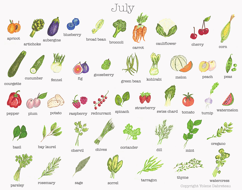 Fruit and Vegetables in Season Calendar