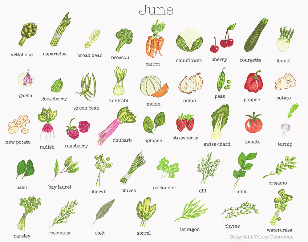 June Fruit and Vegetables Seasonal Calendar
