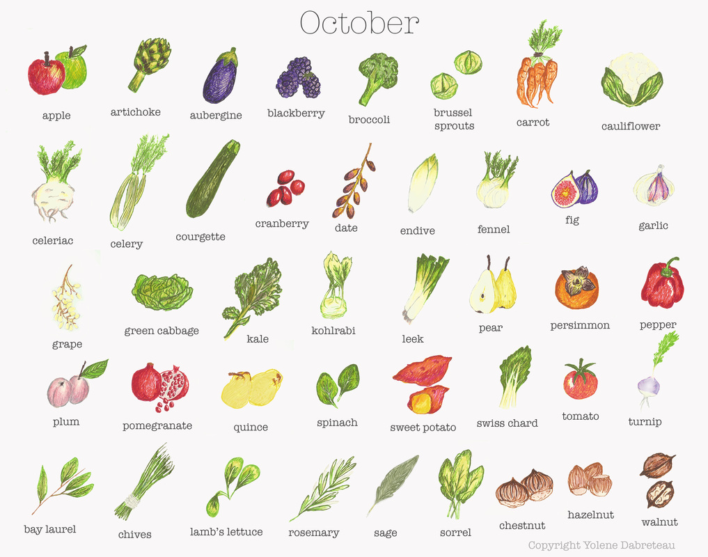 Seasonal chart - fruit and vegetables | Food24